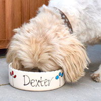 Personalised Dog Bowl - Petal