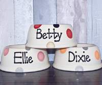 Personalised Dog Bowls - Dotty Slanted