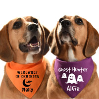 Personalised Halloween Dog Bandana