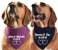 Personalised Wedding Day Dog Bandana