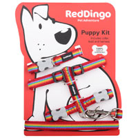 Puppy Harness, Collar & Lead Set - Rainbow