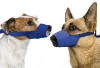 Original Quick Muzzle For Dogs