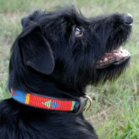 Beaded Leather Dog Collar - Pokot Red
