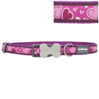 Red Dingo Dog Collar Breezy Love Purple