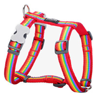 Red Dingo Dog Harness Rainbow