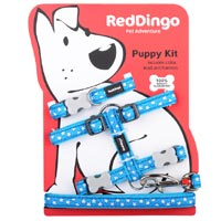 Puppy Harness, Collar & Lead Set - White Stars on Turquoise