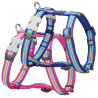 Red Dingo Dog Harness Horizontal Stripe