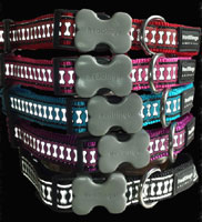 Bones Reflective Dog Collar