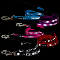 Bones Reflective Dog Lead