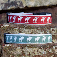 Rudolph Christmas Dog Collar