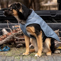 Ruffwear Overcoat Dog Jacket