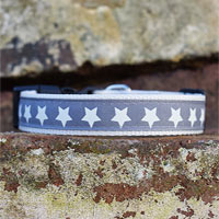 Starry Night Christmas Dog Collar