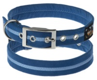 Faux Suede Royal Blue Dog Collar