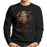 Unisex Dog Lover Sweatshirt - Cocker Spaniel