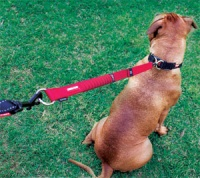 Zero Shock Dog Lead Extension