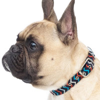 Zig Zag Fabric Dog Collar