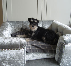 Sandringham Silver Velvet Luxury Dog Bed