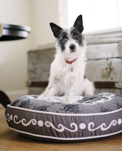 round cushion dog bed - cameo