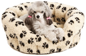 warm sherpa fleece dog bed