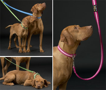 suedette luxury dog leads