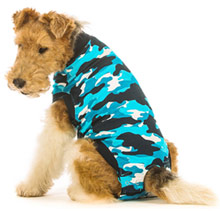 Suitical dog protective suit