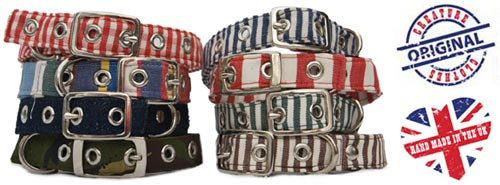 Traditional metal buckle dog collars with eyelets