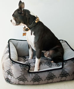 Velvet Dog Bed Lounger