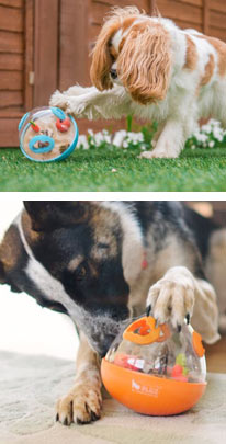 Wobble Ball dog treat toy